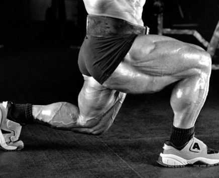 Platz Legs